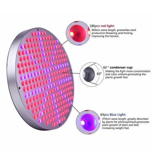 round LED grow light 50w, LED grow lights manufacturer